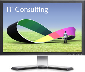 Hire Anuko consultant for IT solutions